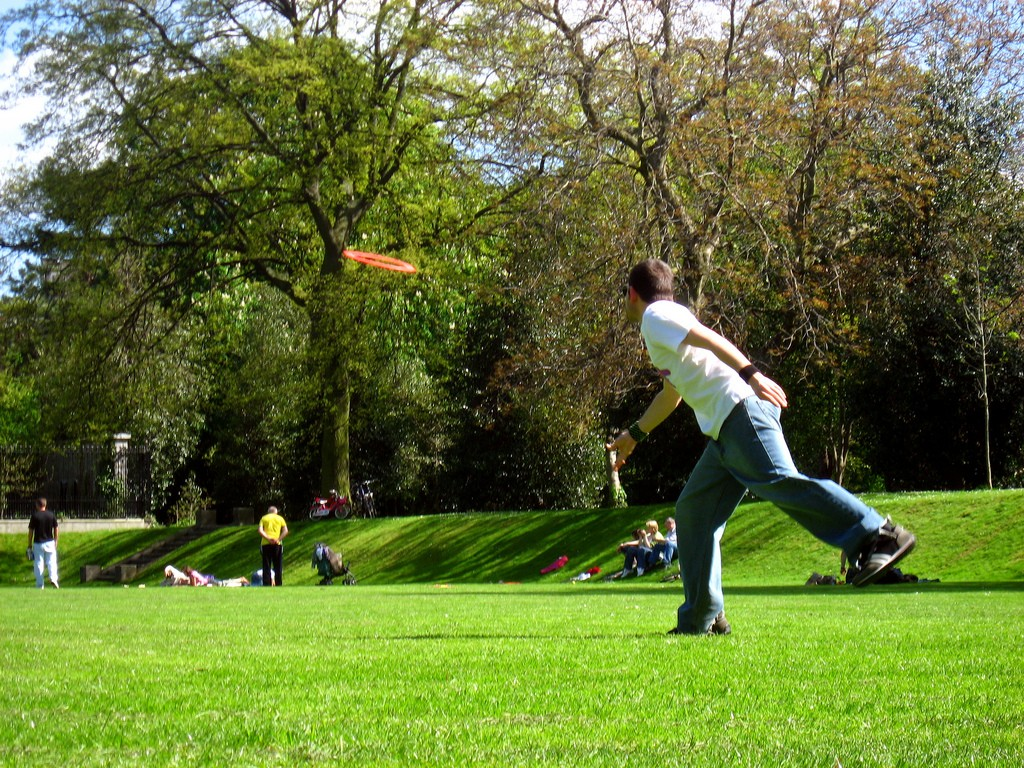 Iveagh gardens throw