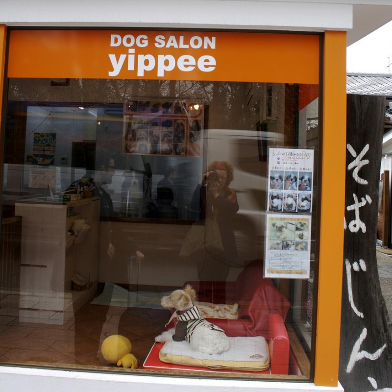 Kyoto Dog Salon Yippee