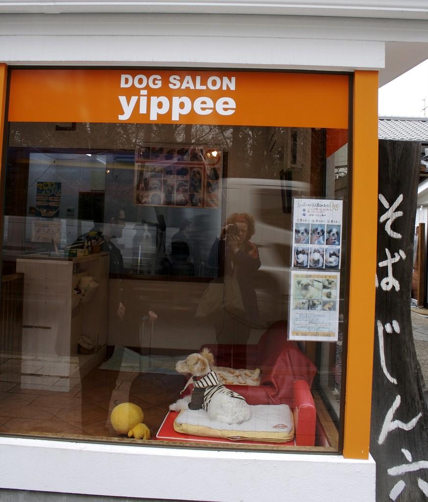 Kyoto Dog Salon Yippee