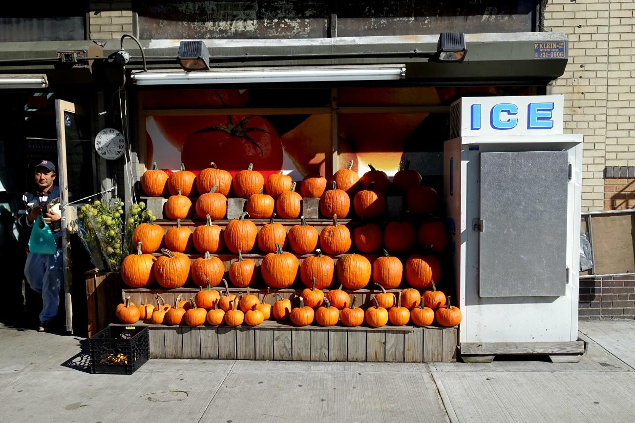 Pumpkins and Ice NYC