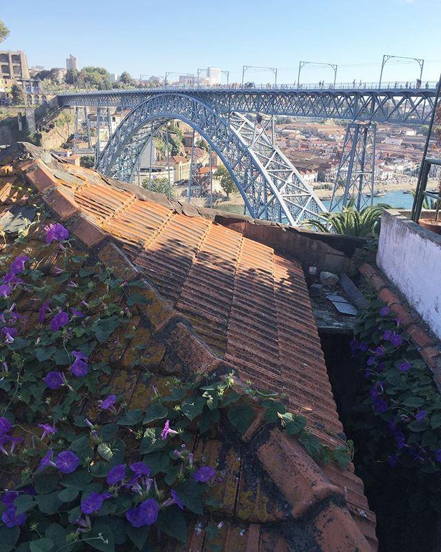 A fine bridge #blog