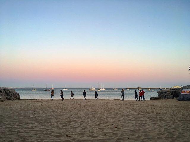 Some bucks on a beach #blog #cascais