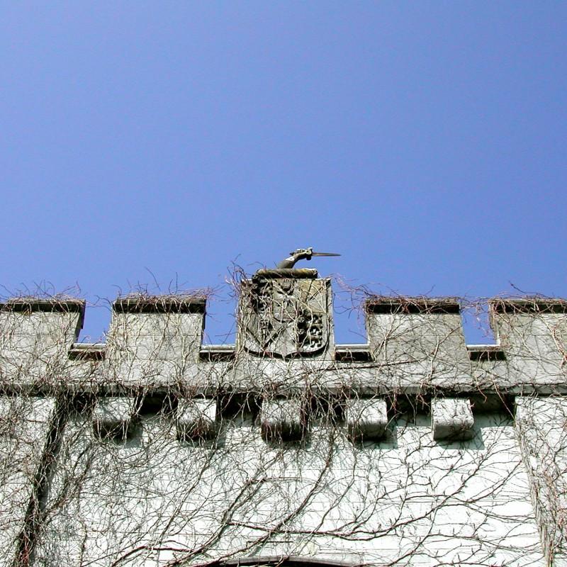 Castle top