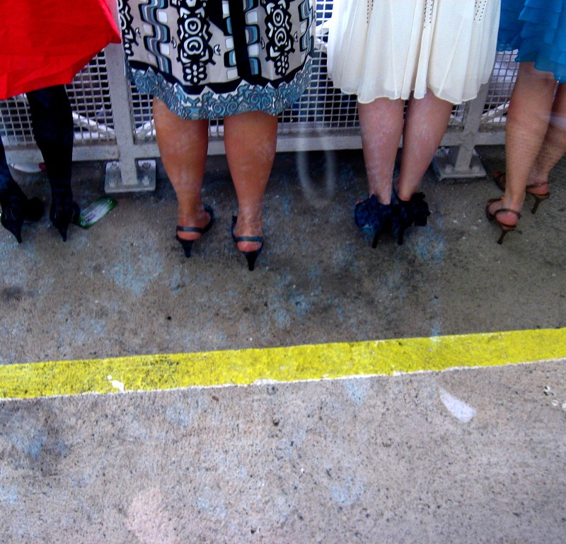 Legs at the races