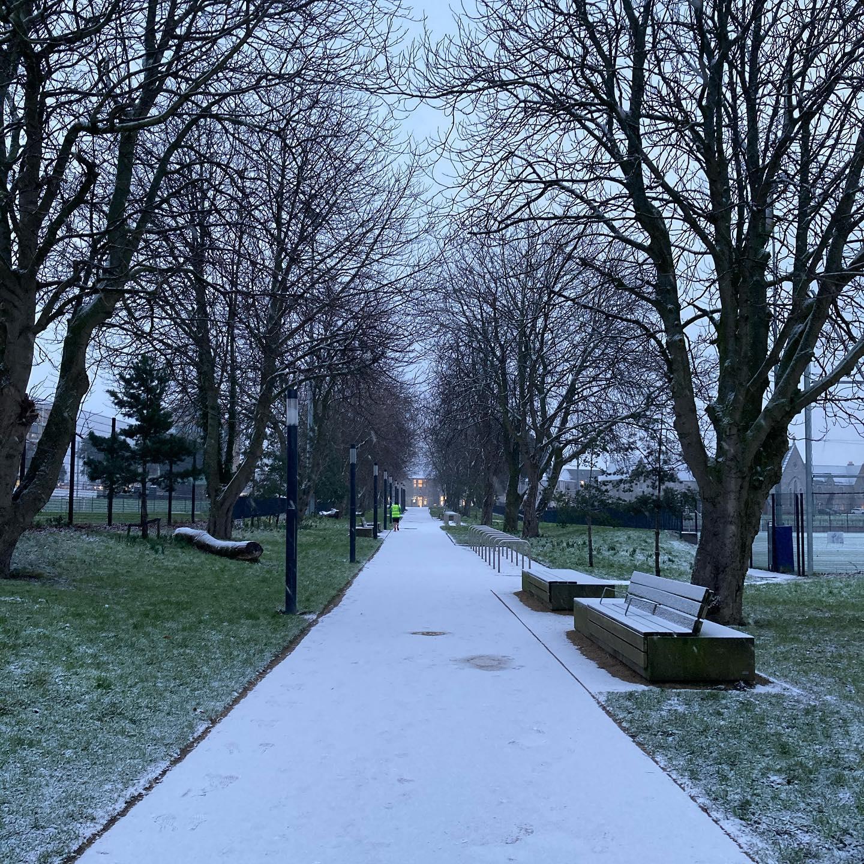 Lovely snowy morning